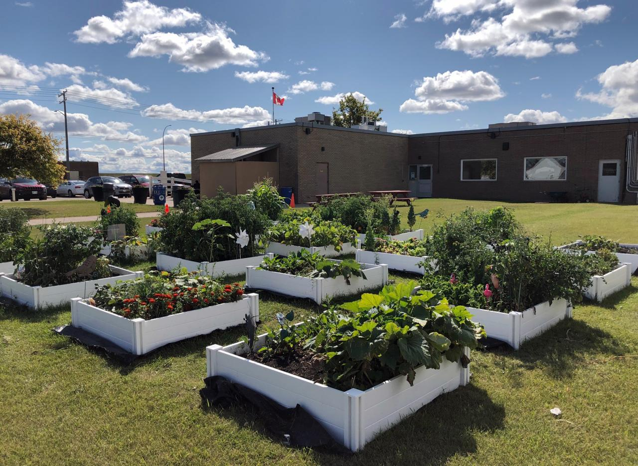 Maple-Leaf-Foods-Lagimodiere-Community-Garden-Plots