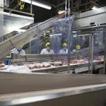 Brandon, Manitoba Pork Plant - Assembly Line Workers